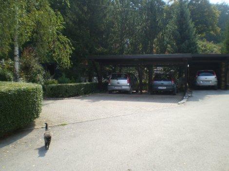 Casa dos pais do Mitja, não há portões na garagem