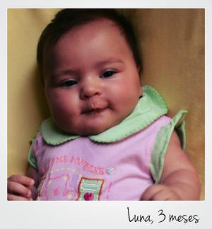 Luna, foto 3 meses, portugues p